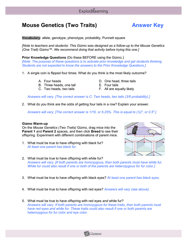Worksheets Dichotomous Key Worksheet 100 dichotomous key worksheet paraphrasing worksheets 5th student exploration keys